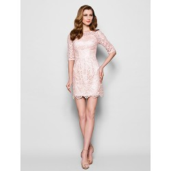 Sheath Column Plus Sizes Petite Mother Of The Bride Dress Pearl Pink Short Mini Half Sleeve Lace